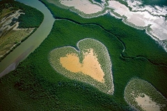heart_shape_feild
