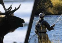 lov-ribolov