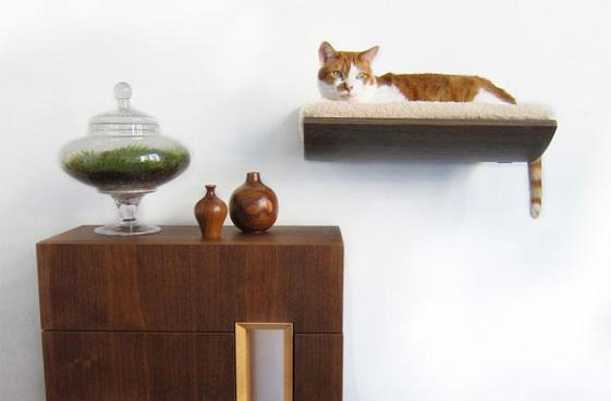 furniture-design-for-pet-lovers-8-1