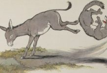 mazga i vuk