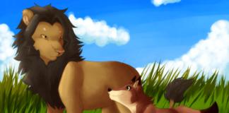 lisica-lav