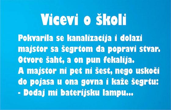 vicevi skola