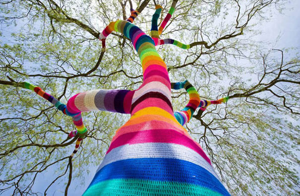 1 ususkano drvo