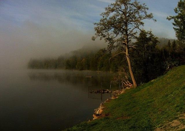 5 svarcvald jezero titisee